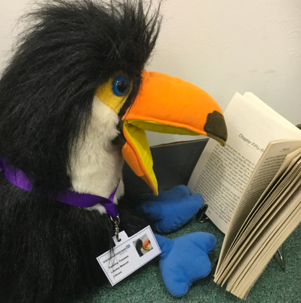 Tommy Toucan